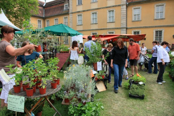 Das_Fürstliche_Gartenfest_Schloss_Fasanerie_002