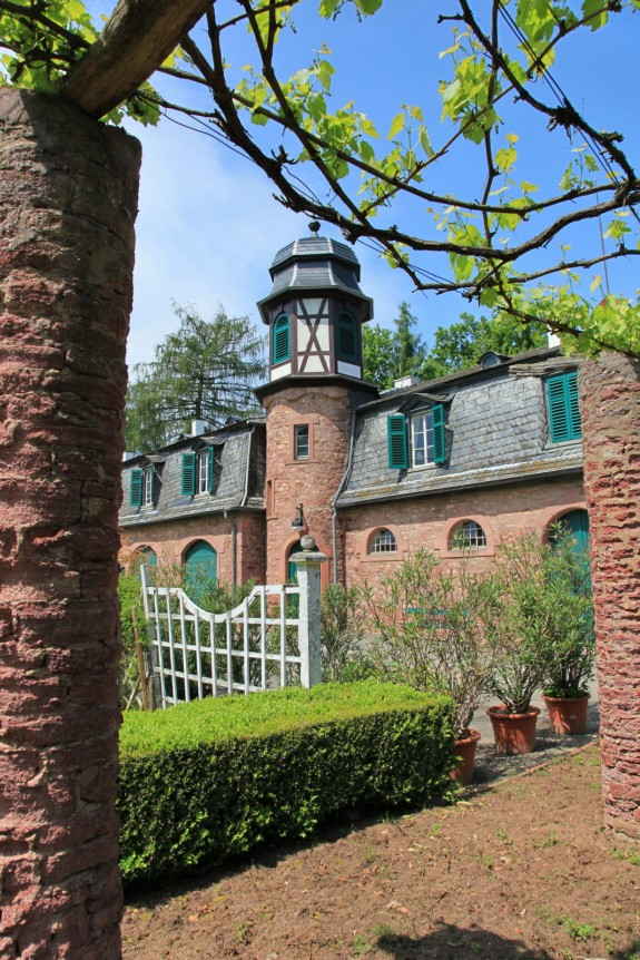 Schloss_Wolfsgarten_Rhododendrenblüte_003