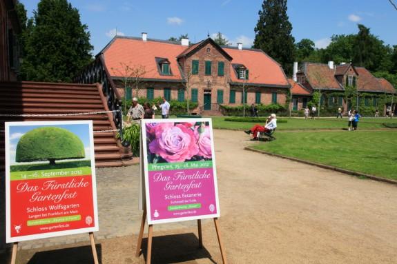 Schloss_Wolfsgarten_Rhododendrenblüte_006