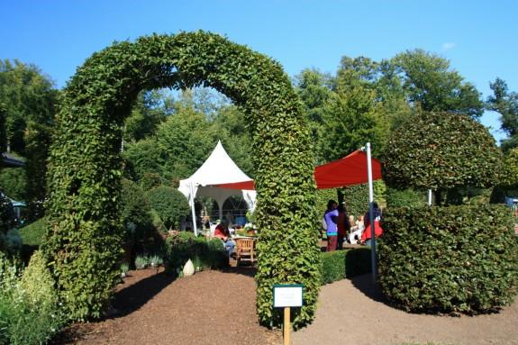 Fuerstliches_Gartenfest_Schloss_Wolfsgarten_010