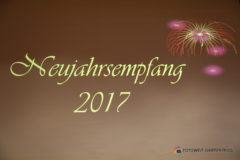 Neujahrsempfang 2017